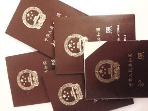 pasport-305.png