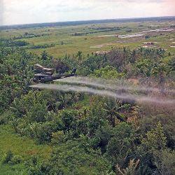 Máy bay quân sự A UH-1D của quân đội Mỹ rải chất khai hoang màu da cam xuống một khu vực ở đồng bằng sống Cửu Long trong thời chiến tranh VN. Hình do Brian K. Grigsby chụp ngày 26-7-1969. Photo courtesy of wikipedia.