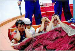 Ngư dân Việt Nam bị Trung Quốc bắt hồi năm 2009.Source lysonforum.