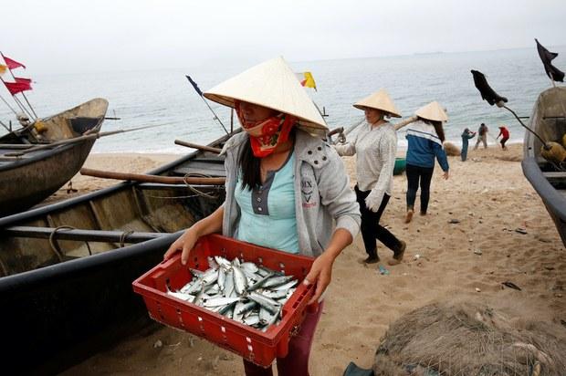 Cả năm năm mà nút thắt đền bù thảm họa Formosa Hà Tĩnh gây ra vẫn chưa tháo gỡ hết