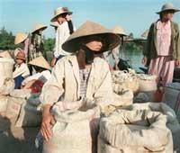 RiceTrader200.jpg