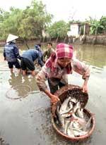 FishFarmer150.jpg