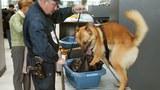 An ninh được tăng cường tại phi trường quốc tế