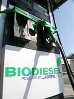BiodieselOil150.jpg