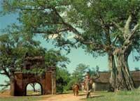 Thôn làng Việt Nam.