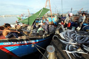 Vietnamese-fishermen-305.jpg