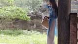 Ở trong làng Vạn Phúc có dệt tơ tằm chính cống nhưng nhà buôn ít mua vì nó đắt