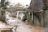 TyphoonFlooded200.jpg