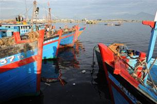 Nhiều ngư dân neo thuyền không dám ra biển sợ bị cướp, bị bắt