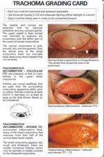 TrachomaDauMatHot150.jpg
