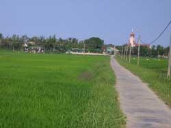 Đường vào nhà thờ Cồn Dầu, ảnh chụp năm 2010. Hình do độc giả gởi RFA.
