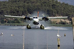 DHC-6-afp-Aris-Messinis-250