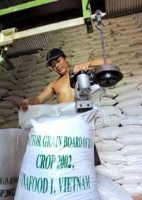 Gạo xuất khẩu đang được đóng bao. AFP PHOTO.