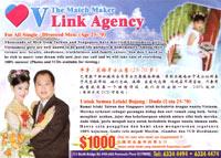 VLink_VNbrides200.jpg
