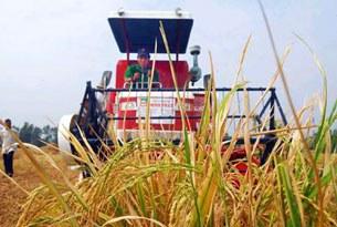 Một trong những loại máy gặt đang được sử dụng ở Việt Nam