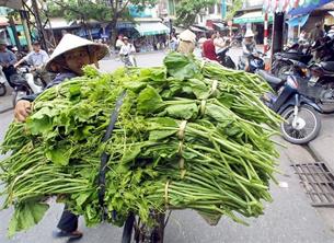 Bán rau cỏ lưu động trong thành phố. AFP