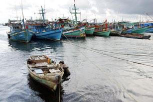 Có lúc ngư dân VN dù đang trong mùa khai thác, nhưng phải nằm bờ do lệnh cấm mà phía Trung Quốc đưa ra như hồi tháng năm vừa qua. AFP