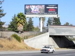 Bích chương ở San Jose, cảnh Việt Nam đàn áp ngay tại toà.