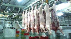 Nguồn thịt heo tiêu thụ giảm rất nhanh. Courtesy Cục Thú Y.