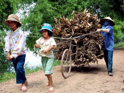 Hai bé gái lao động phụ mẹ tại một làng thuộc ngoại thành Hà Nội.