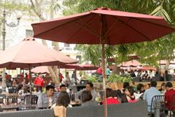 Một tiệm cà phê ở Hà Nội. Photo by Tyler Chapman