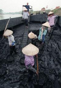 Công nhân mỏ than. AFP