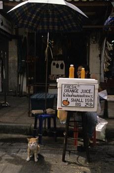 Một phụ nữ bán nước cam tươi ở Thái Lan.