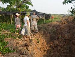 Người dân Xuân Quan, Văn Giang trở lại trồng cây trên đất đã bị cưỡng chế, ảnh chụp tháng 5 năm 2012. File photo.