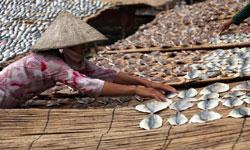 Người dân Mekong phơi cá khô. RFA photo