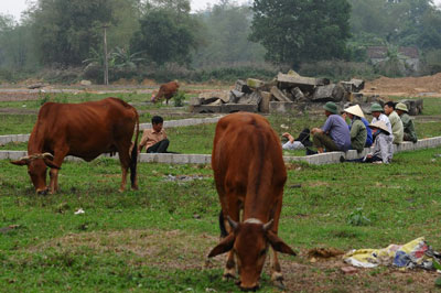 Nông dân ngồi trên một khu đất nông nghiệp đã biến thành dự án khu dân cư ở ngoại thành Hà Nội hôm 4/4/2016.