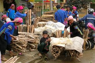Đồng bào Hmong bán củi (ảnh minh họa) RFA