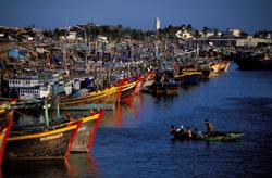 Đoàn tàu đánh cá của ngư dân Phan Thiết, Bình Thuận. AFP photo