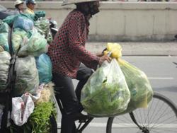 Người nghèo mưu sinh- RFA photo