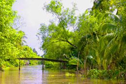 Những con rạch nhỏ chảy qua các thôn làng Miền Nam.