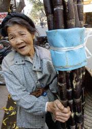 Tuổi cao các cụ vẫn vác mía đi bán. AFP