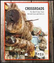 Báo cáo  của EIA có tên 'Crossroads: the Illicit Timber Trade Between Laos and Vietnam'
