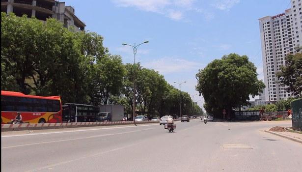 Hình ảnh cây xanh tại Hà Nội.