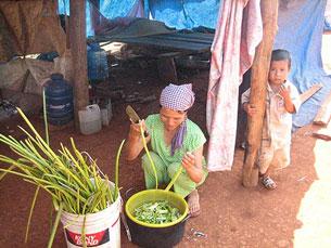 Sau khi bị thu đất hàng trăm người bị đẩy ra ven đường sống vất vưởng ở Bình Phước