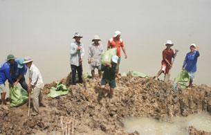 Người dân tích cực tham gia bao vệ đê, bảo vệ diện tích lúa của chính mình ( ảnh chụp tại xã Tân Hộ Cơ, huyện Tân Hồng). Source tinmoi.vn