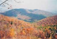 fall200.jpg