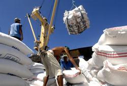 Gạo xuất khẩu lên tàu- AFP photo