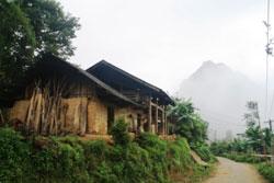 Đất rừng của người dân tộc thiểu số Việt Nam. Photo courtesy of speri.org