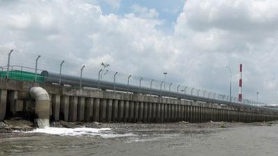 Một ống xả thải của Nhà máy giấy Lee & Man ra sông Hậu.