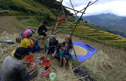 Một gia đình nông dân Hmong ăn trưa trên cánh đồng. AFP photo