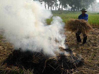 Nông dân đốt rơm trên một cánh đồng ở ngoại thành Hà Nội.