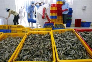 Xuất khẩu thủy sản. AFP
