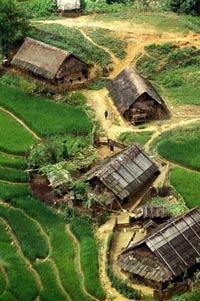 Những căn nhà lá dọc theo những thửa ruộng bậc thang ở Lào Cai, VN. AFP photo