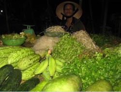 Rau xanh bán tại một chợ ở Sài Gòn, ảnh chụp trước đây. RFA PHOTO.
