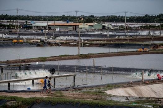 Nuôi thủy sản tại Đồng bằng sông Cửu Long, ảnh minh họa chụp trước đây.