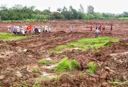 Khu vực đất chưa giải quyết nhà thầu đã cho ủi sạch. Blog xuandien